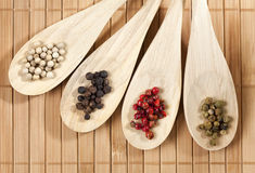 Four varieties of peppercorns Stock Image