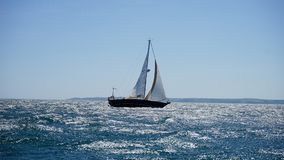 White and Black Sail Boat on Ocean Royalty Free Stock Photography