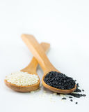 White and black sesame Royalty Free Stock Photos