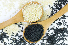 White and black sesame Stock Image
