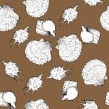 White and black sketch illustration of seashells on trendy Dark Cheese color Panton 2019-2020 background. Seamless pattern stock photography