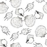 White and black sketch illustration of seashells on white background. Seamless pattern stock photography