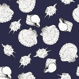 White and black sketch illustration of seashells on white background. Seamless pattern royalty free stock photo
