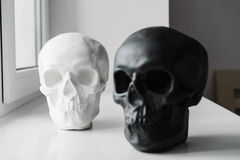 White and black skulls stand on the windowsill Royalty Free Stock Photography