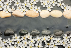 White and black  stones and  flowers  in the water Royalty Free Stock Images