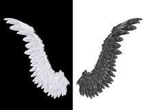 White and Black Wing Stock Photos