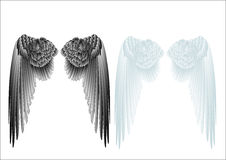 White and black wings Royalty Free Stock Images