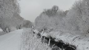 White and black winter on the river. royalty free stock photography