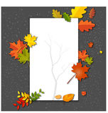 White blank on autumn background with maple leaves. Illustration of White blank on autumn background with maple leaves Stock Photo