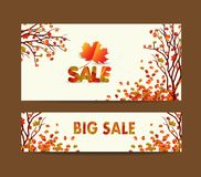 White blank with autumn maple leaves on background for design banner, ticket, leaflet, card, poster Royalty Free Stock Image