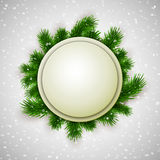 White blank banner decorated with fir branches on show background, winter, Christmas, New Year design Stock Photos