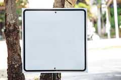 White blank board for text and message. White empty board for text on the tree Royalty Free Stock Images