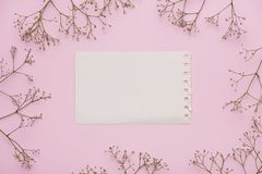 White blank card with pastel flowers and ribbon on pink pale background, floral frame. Creative greeting, Invitation and holiday c. Oncept Royalty Free Stock Photo