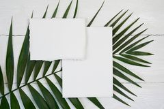 White blank greeting card on a background with palm leaf on a white wooden background with space for your text. Mockup. With envelope and blank card. Flat lay royalty free stock images