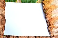 White blank paper with brown old leaf. Royalty Free Stock Images