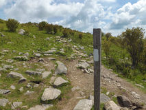 White Blaze on the Appalachian Trail Stock Photo