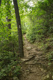 White Blaze on the Appalachian Trail. Located, Tinker Ridge, Botetourt County, Virginia, USA Stock Images