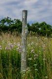 White Blaze on Post in Field Stock Image