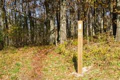 White Blazes on the Appalachian Trail Stock Image