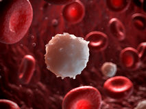 White blood cell Royalty Free Stock Images