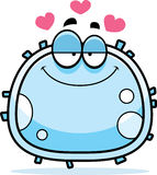 White Blood Cell Love Royalty Free Stock Photos