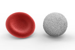 White blood cell with red blood cell. 3d rendering white blood cell with red blood cell on white background Royalty Free Stock Image