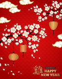 White Blooming Sakura Branches on Red Backdrop Royalty Free Stock Photography