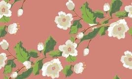 White Blossom Ornament Royalty Free Stock Photos