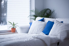 White and blue cushions Royalty Free Stock Images