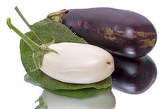 White and blue eggplant Royalty Free Stock Photos