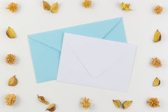 White and blue envelops surrounded by dried flowers frame. Top view, flat lay. White and blue envelops surrounded by dried flowers frame on white background Royalty Free Stock Photos