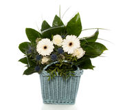 White blue flower bouquet mixed Stock Image