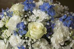 White and blue flower bouquet Royalty Free Stock Image