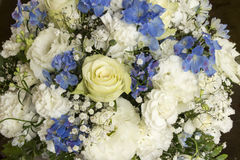 White and blue flower bouquet Royalty Free Stock Photo