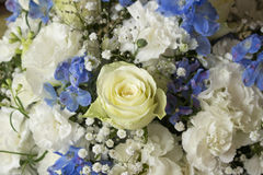 White and blue flower bouquet Royalty Free Stock Images