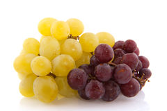 White and blue grapes Stock Image