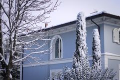 White and blue house and snowy plants Royalty Free Stock Photos