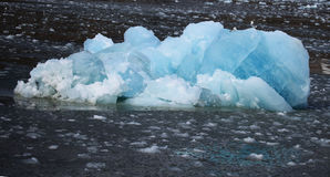 White and blue ice, small icebergs floating in Svalbard Royalty Free Stock Images