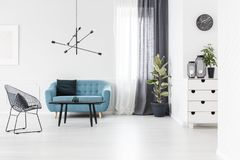 White and blue living room. Armchair next to black table and blue settee against white wall in living room interior with ficus Royalty Free Stock Image