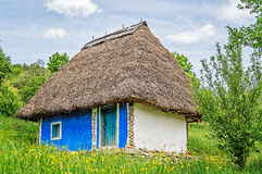 White and Blue Old Clay House. With a thatched roof and exposed wooden beams in a field of yellow flowers Royalty Free Stock Images