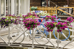 Causeway With Vivid Flowery Arrangements In Flowerpots With White And Blue Painted Decorative Bicycles Set Beside. Photograph of river raft restaurant entrance Stock Photography