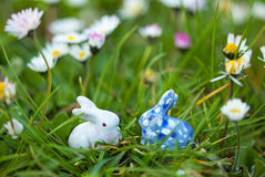White and blue rabbit. In the meadow Stock Photos