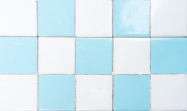 White and Blue Restroom Tile Wall with Chess Pattern Stock Images