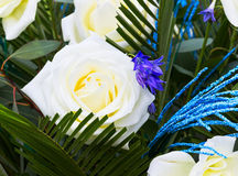 White with blue a rose Royalty Free Stock Images