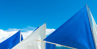 White and blue sails Stock Image