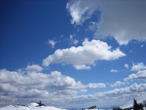 White blue sky. Winter sky, 2000 meters above sea level, with a rich in nature Royalty Free Stock Photography