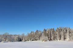 White and blue winter landscape, rural Sweden, Scandinavia nature Stock Photo
