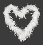White boa heart Stock Photos
