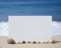 White board on sandy beach. White board with seashells on sandy beach Royalty Free Stock Image