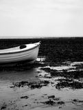 White boat. On a seaweed covered beach taken in black and white Stock Photography